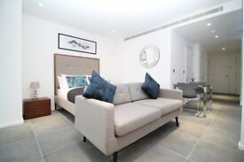 MODERN FURNISHED LARGE PENTHOUSE STUDIO AT THE HEART OF CANARY WHARF WITH GYM 24/7 CONCIERGE E14