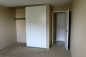 NEED SPACE?  Spacious 2 Bedroom Apartment for Rent in Kingston Kingston Kingston Area image 6