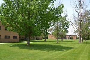 Available Immediately London Ontario image 2