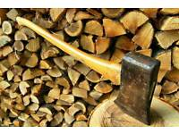 Fire wood cut logs