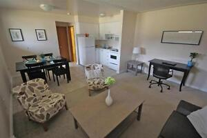 HWY 8 and Fergus Street in Kitchener - Large 2 Bed Apartment! Kitchener / Waterloo Kitchener Area image 6