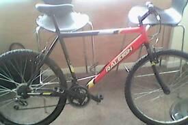 Raleigh Rave 18 speed Shimano All Terrain Mountain Bike
