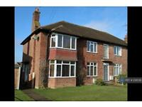 2 bedroom flat in Highfield Road, Chelmsford, CM1 (2 bed)
