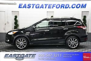 2014 Ford Escape SE Chrome Navigation