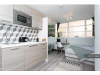 1 bedroom in Gunnersbury Lane, London, W3