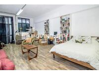Studio flat in Triangle Road, Hackney