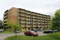 Brantford 2 Bedroom Apartment for Rent: Utilities, laundry