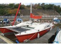 Woods Strider Catamaran Fiberglass