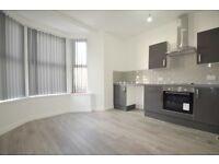 Beautiful 1 bedroom flat on Clive Street