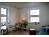 2 bedroom flat in Lordship Road, London, N16 (2 bed)