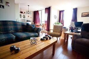 Harbor-View Suites: Mins to Downtown Sydney: 1 Month FREE Rent!!