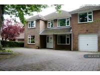 7 bedroom house in Oakwood Road, Southampton, SO53 (7 bed)