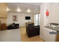 7 bedroom flat in Mulberry Court, Southampton, SO14 (7 bed)