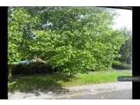 2 bedroom house in Osborne Grove, Bolton, BL1 (2 bed)