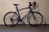 2013 Specialized Secteur Road/Tri Bike