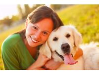 Looking for a trusted, insured pet sitter in your area? Check out Pawshake today! In Bourne