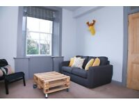 FESTIVAL 10th to 20th Aug - Renovated one bedroom flat in great location near Holyrood Park
