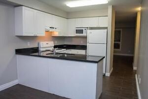 Spacious Apts for Western Students! Parking & Internet Included! London Ontario image 2