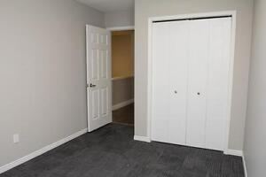Spacious Apts for Western Students! Parking & Internet Included! London Ontario image 17