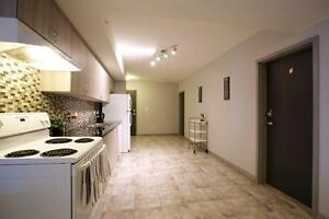 Beautiful Student Apartments - Wifi & AC Included! CALL TODAY! Kitchener / Waterloo Kitchener Area image 1