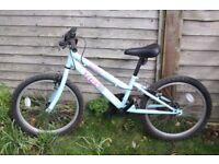 Childs bike 20 inch wheel