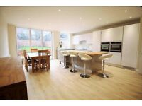**Brand NEW&Modern 4 bedroom semi detached house with 2 bathrooms,big drive and garden!**
