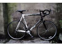 BARRACUDA AZURRI, 25.5 inch, 65 cm, racer racing road bike, 14 speed