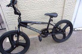 bike Muddyfox Fluke BMX 20inch MAG wheels