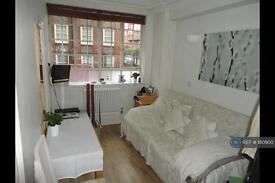 Studio flat in Sloane Avenue, London, SW3