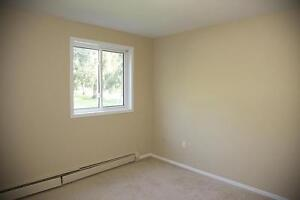 Strathroy 2 Bedroom Apartment for Rent: Balcony, large closets London Ontario image 1