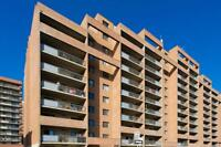 Upgraded One Bedroom For Rent at Royal View - 1320 16th...