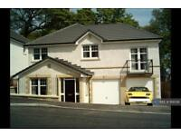 4 bedroom house in Mayfield Grove, Dundee, DD4 (4 bed)