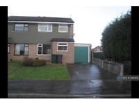 3 bedroom house in Lapwing Vale, Rotherham, S61 (3 bed)