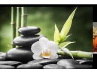 Best Full body massage ( we do 4 hands massage)