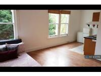 Studio flat in Montrell Road, London, SW2