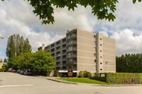 2 Bdrm available at 544 Sydney Avenue, Coquitlam