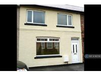 3 bedroom house in Ramsay Street, Tursdale, DH6 (3 bed)