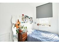 3 bedroom apartment Green Lanes n16* Very well decorated, very bright*