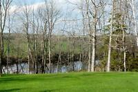 325' WATERFRONT! 294' ROAD FRONTAGE! 10.8 ACRES! PART 2
