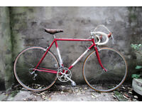 CICLI ZINI CAMPIONE MKII, vintage racer racing road italian bike, 21 inch small size, 12 speed