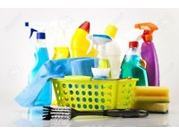 professional cleaners fast and reliable