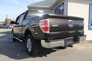 2013 Ford F-150 XLT Windsor Region Ontario image 3