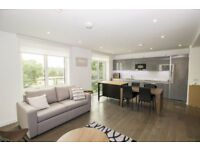 LUXURY BRAND NEW 2 BED 2 BATH SOUTH GARDEN MANSIONS ELEPHANT PARK SE1 CASTLE BOROUGH KENNINGTON