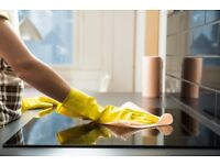 ANNA Friendly cleaning £ 12.50 / h