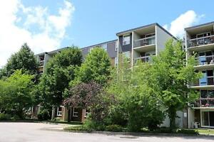 Spacious Non-Smoking 3 Bedroom Apartment for Rent in Stratford Stratford Kitchener Area image 11