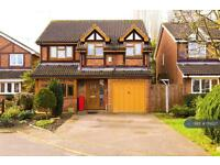 5 bedroom house in Robin Close, Ware, SG12 (5 bed)