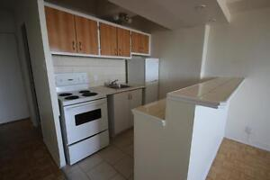 Renovated 1 Bedroom available July or Later - NDG - VENDOME