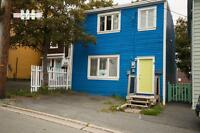 8 Brine St. - Two Bedroom Home Downtown St. John's