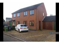 3 bedroom house in Ferguson Road, Attleborough, NR17 (3 bed)