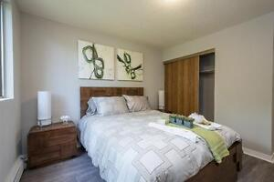 Modern Renovated One Bedroom in Strathroy - New Kitchens! London Ontario image 8